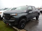 2020 Shadow Gray Metallic Chevrolet Silverado 1500 LT Trail Boss Crew Cab 4x4 #136954918