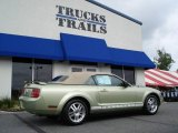2005 Legend Lime Metallic Ford Mustang V6 Premium Convertible #13680185
