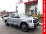 2020 Cement Toyota Tundra TRD Off Road CrewMax 4x4 #137367242