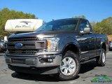2020 Magnetic Ford F150 XL Regular Cab 4x4 #137380153
