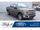 2020 Stone Gray Ford F150 XLT SuperCrew 4x4 #137543668