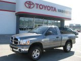 2006 Mineral Gray Metallic Dodge Ram 1500 SLT Regular Cab 4x4 #13745991
