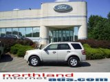 2009 Light Sage Metallic Ford Escape XLT #13738670
