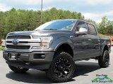 2019 Magnetic Ford F150 Platinum SuperCrew 4x4 #138199548
