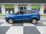 2019 Lightning Blue Ford Escape SE #138242025