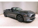 2019 Magnetic Ford Mustang EcoBoost Premium Convertible #138404935