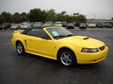 2003 Zinc Yellow Ford Mustang V6 Convertible #13823526