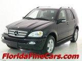 2005 Black Mercedes-Benz ML 500 4Matic #13817894