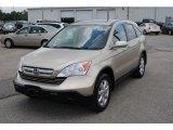 2009 Borrego Beige Metallic Honda CR-V EX-L #138802039
