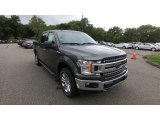 2020 Magnetic Ford F150 XLT SuperCrew 4x4 #139382684