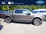 Stone Gray Ford F150 in 2020