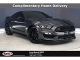2019 Magnetic Ford Mustang Shelby GT350 #139599266