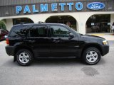 2006 Black Ford Escape XLT V6 4WD #13941309
