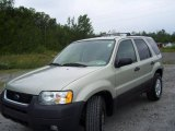 2003 Gold Ash Metallic Ford Escape XLT V6 4WD #13930552