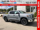 2021 Cement Toyota Tundra SR5 CrewMax 4x4 #139720415