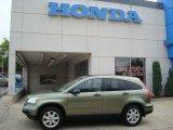 2008 Green Tea Metallic Honda CR-V EX 4WD #13882305