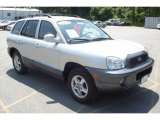 2004 Pewter Hyundai Santa Fe GLS 4WD #13895546