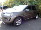 2016 Caribou Metallic Ford Explorer XLT 4WD #139878928