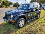 2002 Black Jeep Liberty Limited 4x4 #139914971