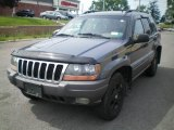 2002 Steel Blue Pearlcoat Jeep Grand Cherokee Sport 4x4 #13881071
