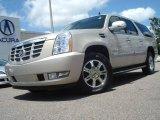 2007 Gold Mist Cadillac Escalade ESV AWD #13878407
