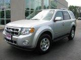 2009 Brilliant Silver Metallic Ford Escape Hybrid #14111173
