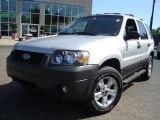 2006 Silver Metallic Ford Escape XLT V6 4WD #14111230