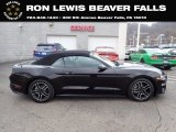 2018 Shadow Black Ford Mustang EcoBoost Premium Fastback #141347557