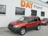 2006 Blazing Copper Metallic Ford Escape XLT V6 4WD #14212157