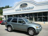 2006 Titanium Green Metallic Ford Escape Limited #14218250
