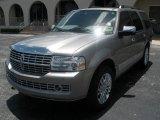 2008 Vapor Silver Metallic Lincoln Navigator Luxury #14430799