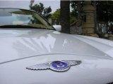 Bentley Azure 1999 Badges and Logos