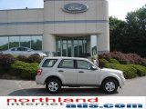 2009 Light Sage Metallic Ford Escape XLT V6 4WD #14573186