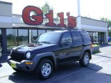 2002 Black Jeep Liberty Sport 4x4 #14579661