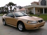 2000 Sunburst Gold Metallic Ford Mustang V6 Convertible #14646201