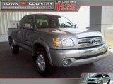 2005 Silver Sky Metallic Toyota Tundra SR5 Access Cab #14719946