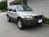 2006 Silver Metallic Ford Escape Hybrid 4WD #14794460