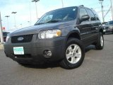 2006 Dark Shadow Grey Metallic Ford Escape XLT V6 #14829189