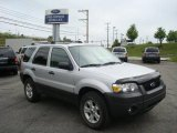 2006 Silver Metallic Ford Escape XLT V6 4WD #14834894