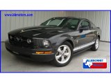 2007 Alloy Metallic Ford Mustang V6 Premium Coupe #14942117