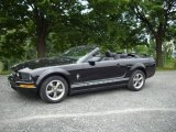 2006 Black Ford Mustang V6 Premium Convertible #15203868
