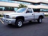 2001 Bright Silver Metallic Dodge Ram 1500 SLT Regular Cab 4x4 #15276493