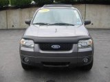 2006 Dark Shadow Grey Metallic Ford Escape Limited 4WD #15267922