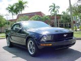 2005 Black Ford Mustang V6 Deluxe Convertible #15385422