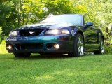 2004 Ford Mustang Cobra Convertible Data, Info and Specs