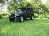 2006 Jeep Green Metallic Jeep Wrangler Sport 4x4 #15396758
