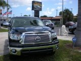 2010 Black Toyota Tundra Platinum CrewMax 4x4 #15469813