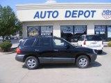 2003 Black Obsidian Hyundai Santa Fe GLS 4WD #15461999