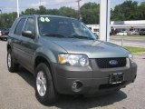 2006 Titanium Green Metallic Ford Escape XLT V6 4WD #15516030