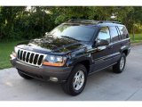 2002 Black Jeep Grand Cherokee Sport 4x4 #15574805